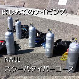 NAUIスクーバダイバーコース