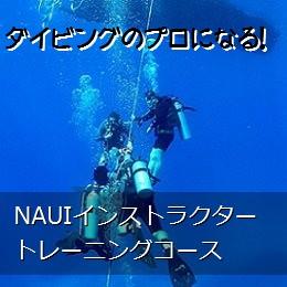 NAUIインストラクタートレーニングコース